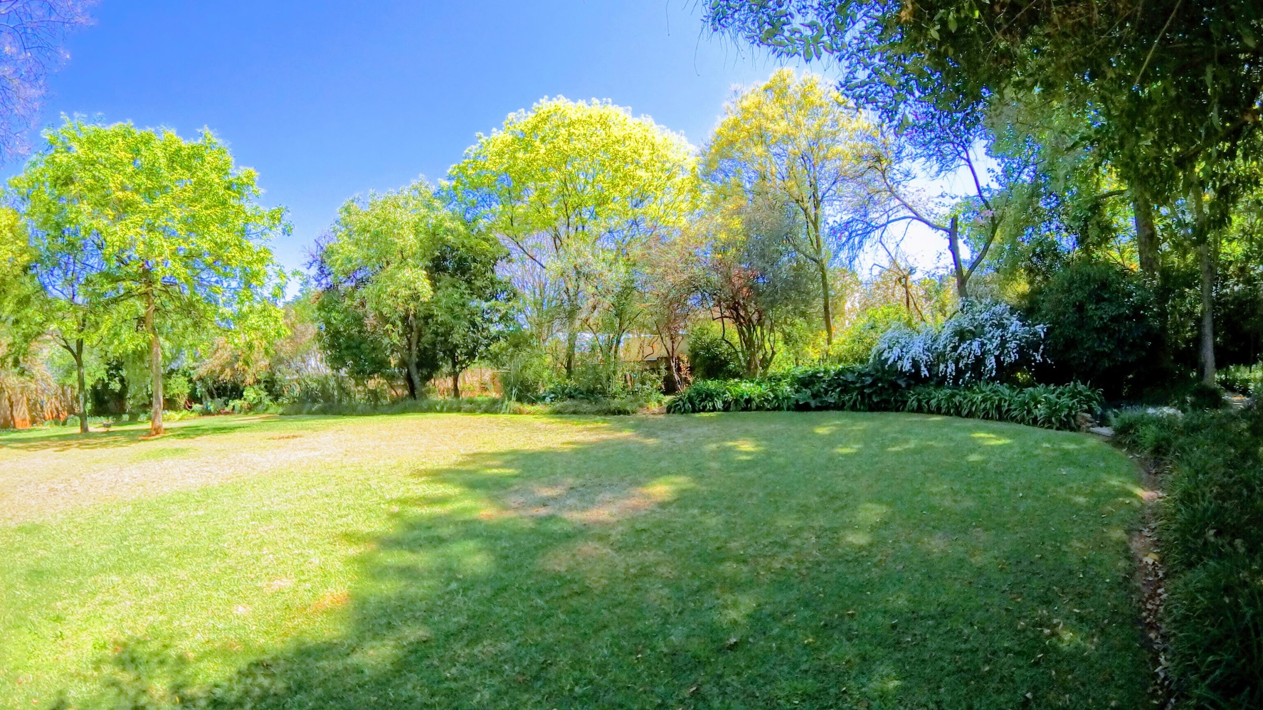 airbnb 360 virtual tour will bring the best out in your garden and property. This image was taken by 360 Degree Pro on Saxonwold, Johannesburg, South Africa